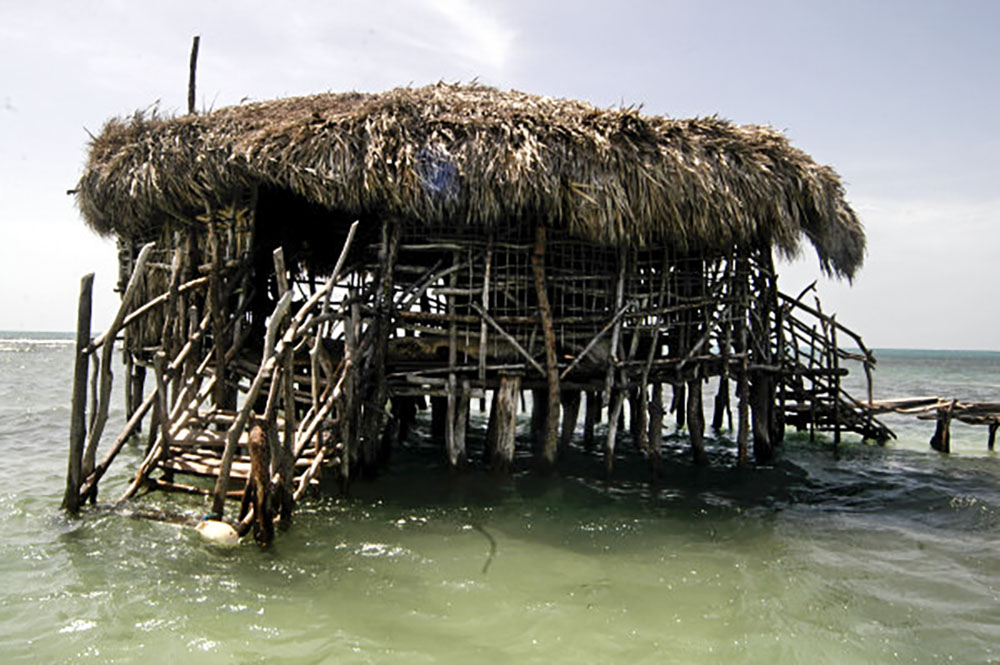 Pelican Bar - Fly High Taxi and Tours Jamaica - www.FlyHighTaxiAndToursJamaica.com - www.FlyHighTaxiAndToursJamaica.net